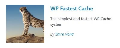 wp fastest cache wordpress plugin